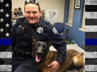 Modesto Police K9 Ike will be saying with his family.